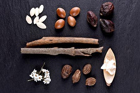 TOP Ingredienzen für die Nährstoff- und Feuchtigkeitsversorgung der Haut